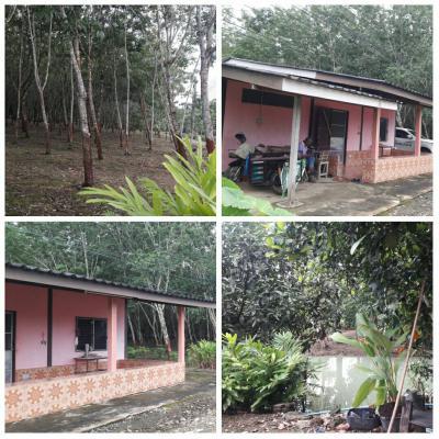 บ้านพร้อมที่ดิน 2900000 จันทบุรี แก่งหางแมว ขุนซ่อง